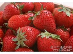 供应水果3--