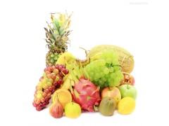 东北水果-- 长春运佳农副产品有限公司