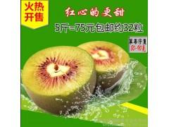 红心猕猴桃 原生态奇异果 黄金果 新鲜水果 5斤包邮(单果净重70-90克)-- 岳西县万盈生态农业科技有限公司