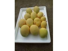 欢乐果园水果  厂家-- 周峰(个人商户)
