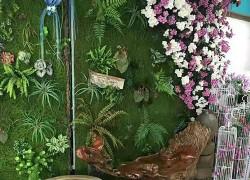 香港香港仿真植物