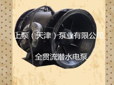 全贯流潜水泵-- 上泵(天津)泵业有限公司