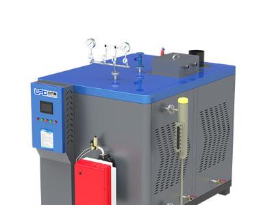 蒸发器低氮小王子系列-- 安徽雷普顿热能设备有限公司