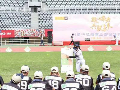 团队棒球-- 安徽生命树企业管理咨询有限公司